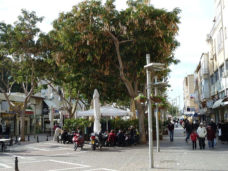 רחוב הרצל בנתניה. (צילום: אבי דרור, וויקפדיה)